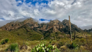 Las Cruces Hiking Trails