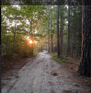 Best Hiking In Pinehurst North Carolina